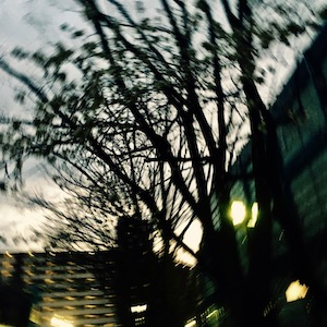 IMG_1422.jpg